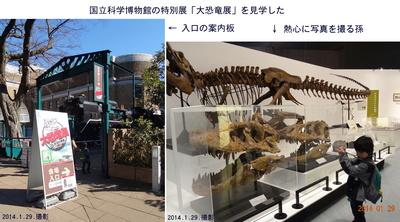 0129恐竜展1.jpg