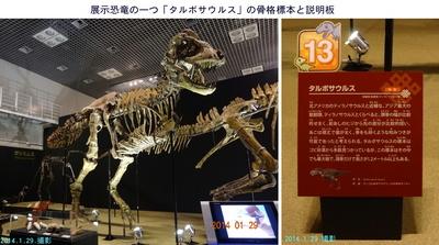 0129恐竜展2.jpg