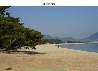 0314津田の松原.jpg