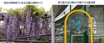 0419公園2題.jpg