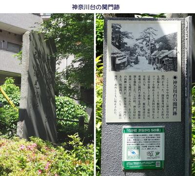 0521ビッグラン1神奈川4.jpg