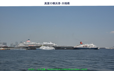 0801大桟橋.jpg