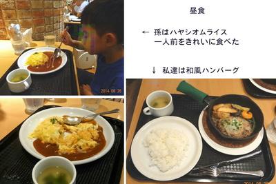 0826鉄道&虫の昼食.jpg