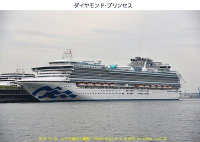 1016ダイヤモンド・プリンセス.jpg