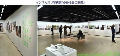 1109新宿ニコンサロン.jpg