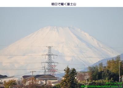 1124富士山1.jpg