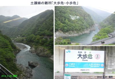 四国3日目大歩危.jpg
